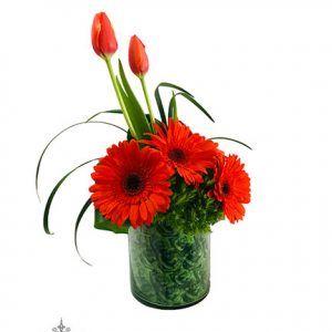 Diseño Floral Gerberas Rojas Tulipanes Rojos 2