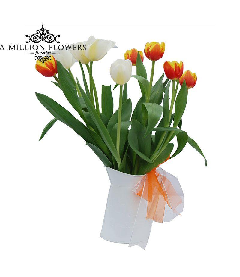 Tulipanes sobre jarra de metal, adornada con listón de satín. Two Tulipan