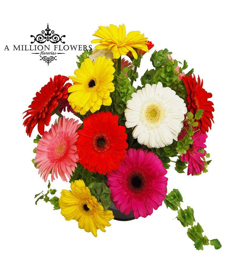 Arreglo Floral Círculo De Gerberas Florería A Million Flowers