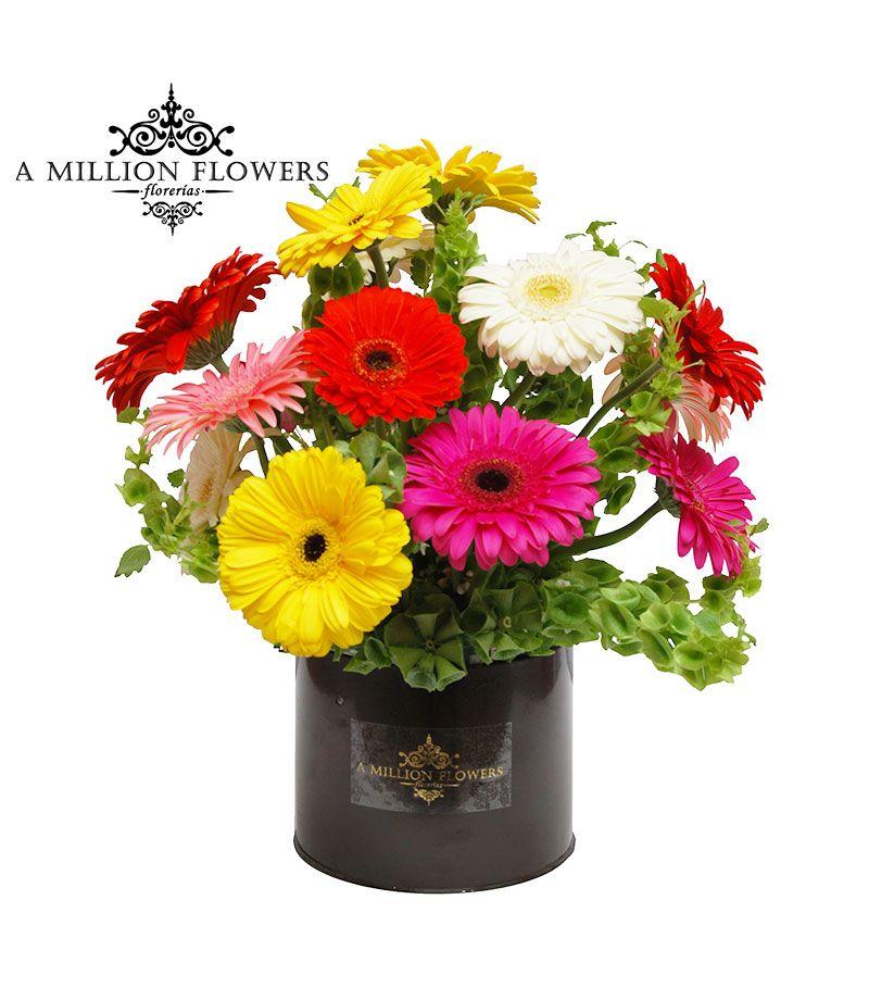 Arreglo Floral Círculo De Gerberas