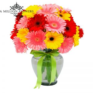 Diseño floral de gerberas de colores en florero 1