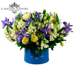 Diseño floral de iris perrito belen blue luxury hombre 1
