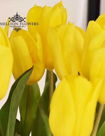 Acercamiento a tulipanes del Arreglo floral of you