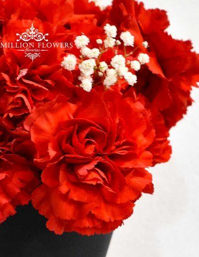 Acercamiento a flor del Arreglo floral conociéndote