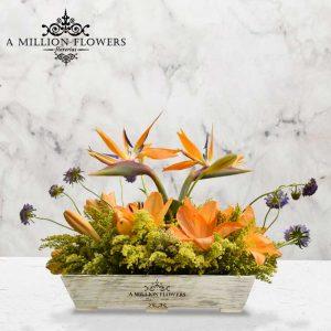 Vista frontal del Arreglo floral scabiosa con base vintage