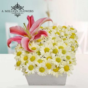 Vista frontal del arreglo floral margarita blanca
